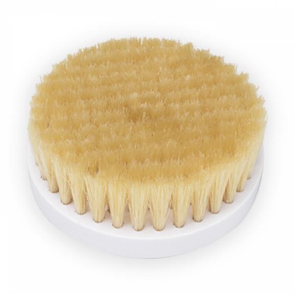 Natural brush head